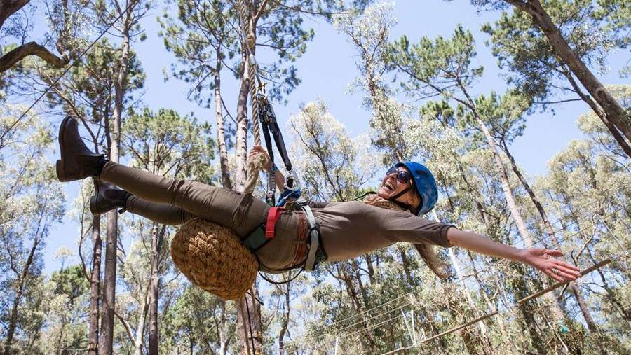 MRBTA set to acquire Forest Adventures South West