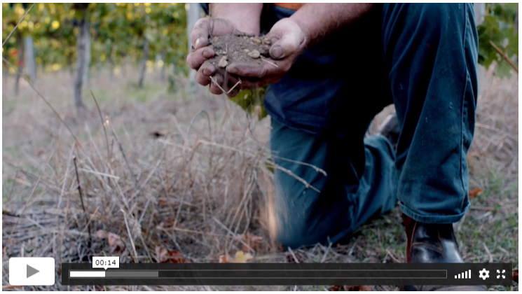 Margaret River Bookable Wine Tourism Experiences Videos
